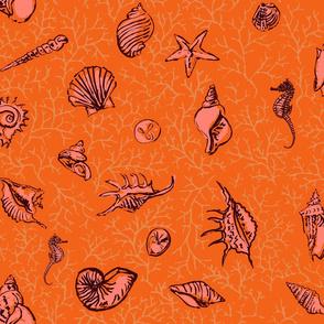 She sells seashells orange coral