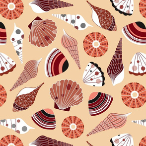 Seashells on the beach  -  medium