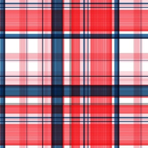 Large twill plaid red and blue