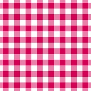 Gingham Pattern - Ruby and White