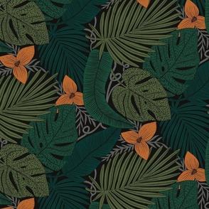 Moody tropical orange flower black background