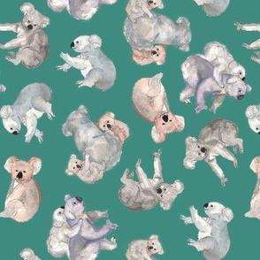 Watercolour Koalas