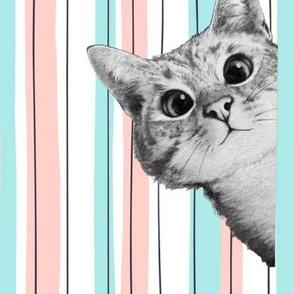 PeekABoo Pastel Cat