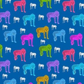 Rainbow Cheetahs! - ocean blue, medium