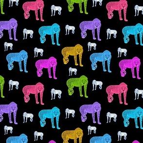 Rainbow Cheetahs! - black, medium