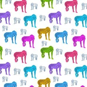 Rainbow Cheetahs! - white, medium
