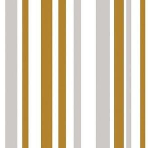 Goldtone, silvertone  stripe