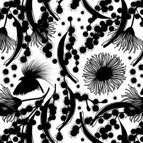 Wattle, Blossom Paradise - black on white, medium/large