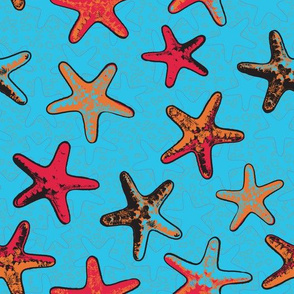 Starfish in the Sand Red Design Large