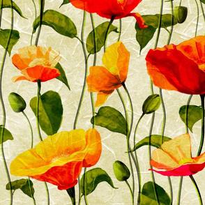 Poppy flowers,poppies,summer art