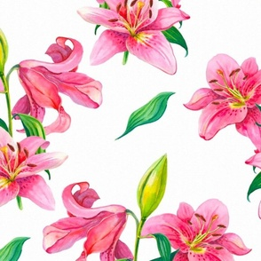 Lily,lilies summer floral art