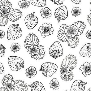 strawberry fields - monochrome