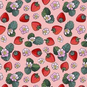 small scale strawberry fields - peach