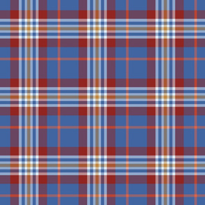 colorful summer plaid