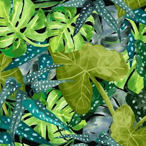 Tropical Leaves Black