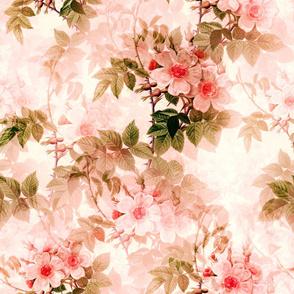 Roses,flowers,pink,elegant art