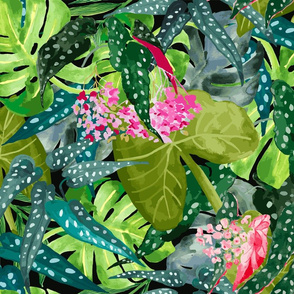 Tropical Leaves & Begonia