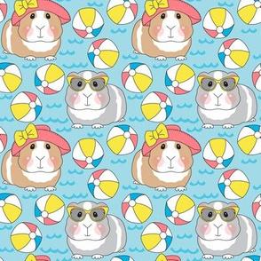 medium guinea pigs and beach balls
