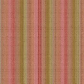 melon-gold_salmon_stripes