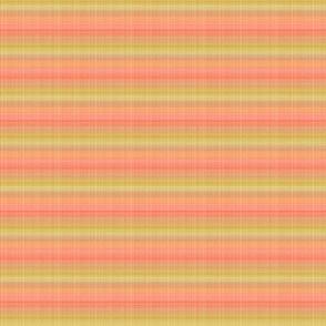 melon-yellow_mod-stripe