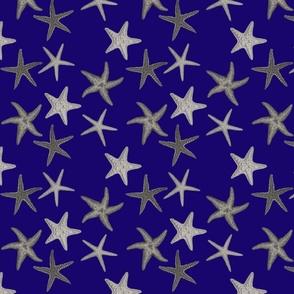 NavyStarfish