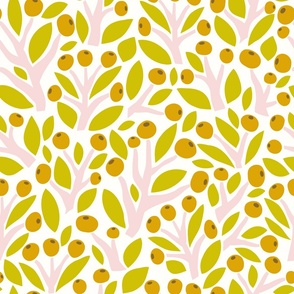 Olives, orange