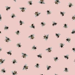 Bee Pink Peach