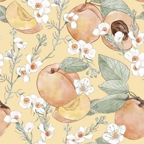 Apricots on yellow background