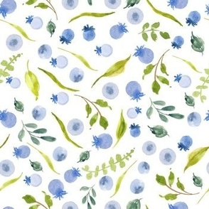 Blueberries and botanical watercolor
