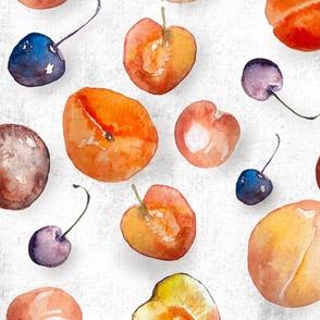 Watercolor Stone Fruit