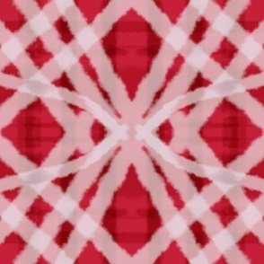 Passionfruit_Simple_Plaid_red_White 3