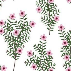 Manuka Flower White