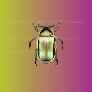 Vintage-Insect Metallic Bug