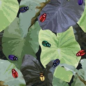 Jeweled beetles taro leaves charcoal