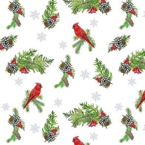 Christmas Cardinal Birdy Bows