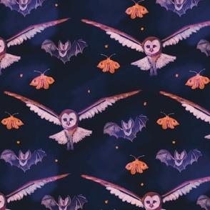 Nocturnal Animals v6 Owl, Bat, Moth