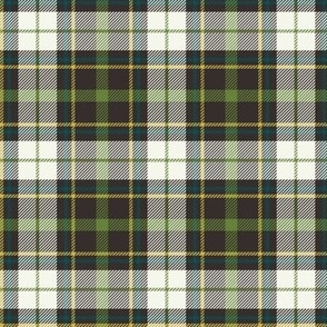 Nature Trail Plaid - Brown Regular Scale