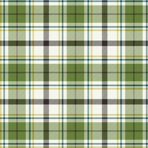 Nature Trail Plaid - Ivory Green Regular Scale
