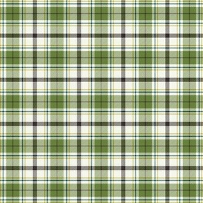 Nature Trail Plaid - Ivory Green Small Scale