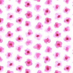 Watercolor Flowers in Pink