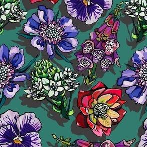 chincherinchee flowers