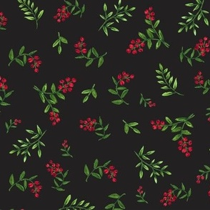 Hand Painted Red Berries and Greenery 2021 on Black