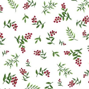 Hand Painted Red Berries and Greenery 2021 on White