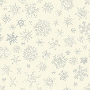 Exquisite Falling Silver Gray Snowflakes from a Cloudy Ivory Sky 2021
