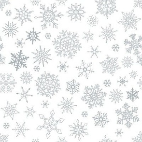 Exquisite Falling White Snowflakes from a Cloudy White Sky 2021
