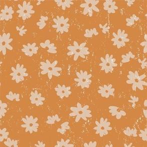 pretty daisy on pumpkin
