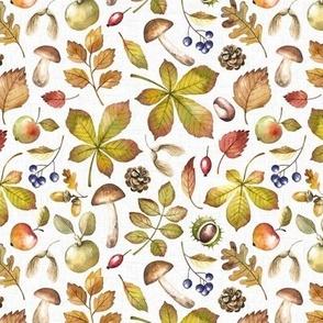 Small Scale / Autumn Foliage / White Textured Background