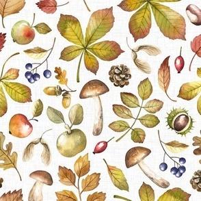 Large Scale / Autumn Foliage / White Textured Background