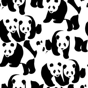 Bear-ly Camouflaged Panda Bears
