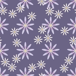 Asters in purple